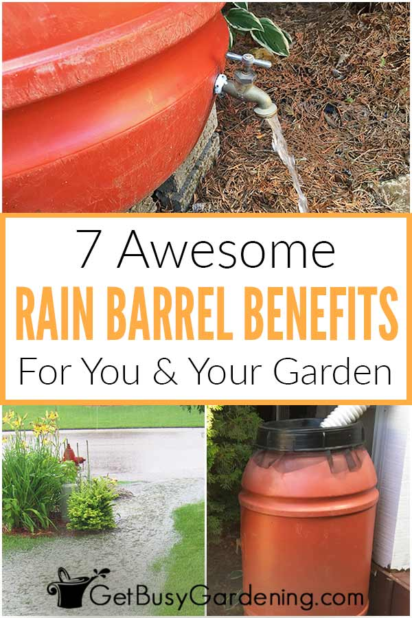 7 Awesome Rain Barrels Benefits For Your & Your Garden