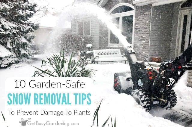 10 Garden-Safe Snow Removal Tips To Prevent Salt Damage To Plants