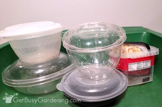 Various food storage containers ready for winter sowing