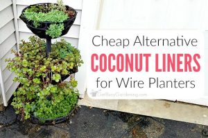 A Cheap Alternative To Coconut Liners For Hanging Baskets & Planters