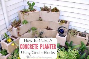 How To Make A Concrete Block Planter