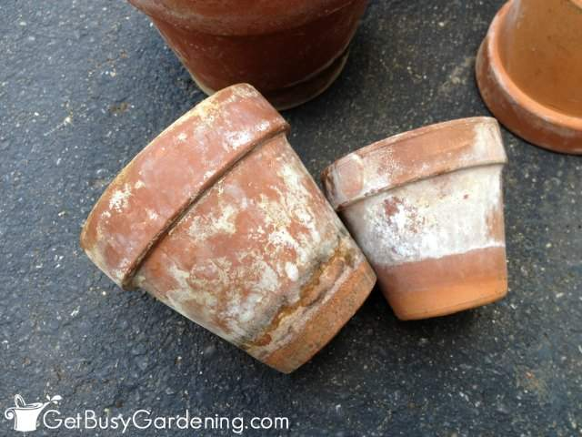 White residue on terracotta pots