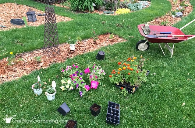 Laying out the plants for my annual garden