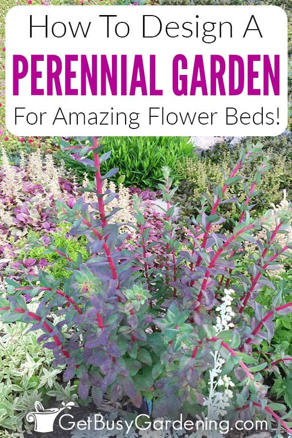 How To Design A Perennial Garden For Amazing Flower Beds!