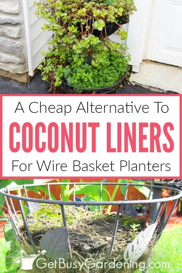 A Cheap Alternative To Coconut Liners For Wire Basket Planters