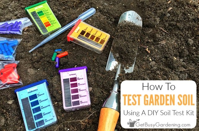 How To Test Your Soil Using A Home Test Kit