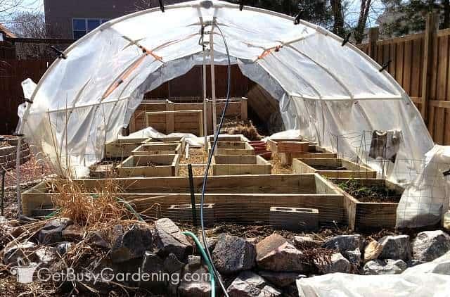 Our diy overhead sprinkler system for greenhouse irrigation