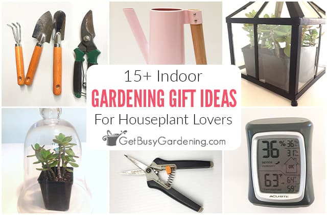 Indoor Gardening Gift Ideas For Plant, What To Gift A Gardening Lover