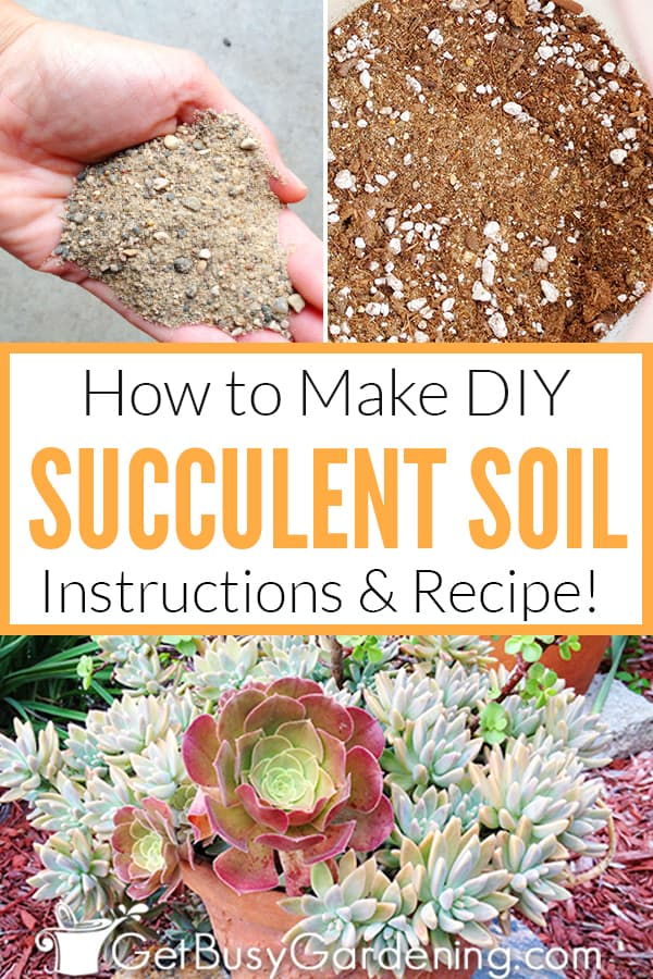 How To Make Your Own Succulent Soil With Recipe Get Busy Gardening
