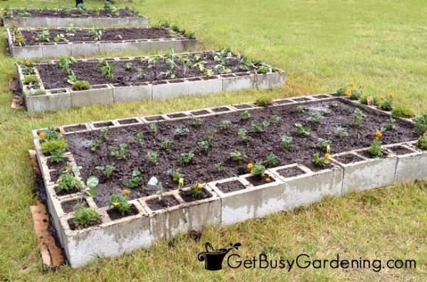 Cinder block raised garden beds completed