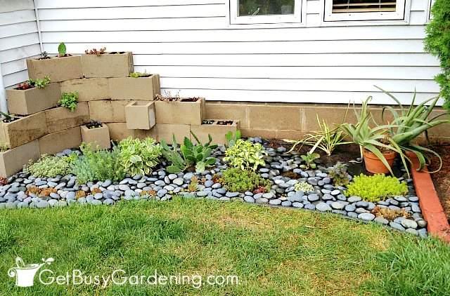 My finished backyard zen garden