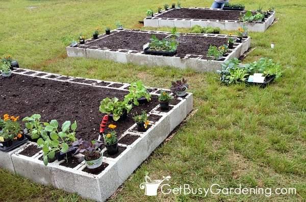 Planting the concrete block garden beds