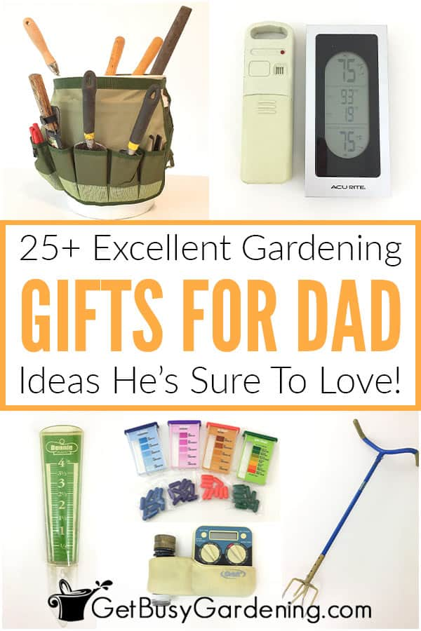 25 Excellent Gardening Gifts For Dad, What To Gift Someone Who Loves Gardening