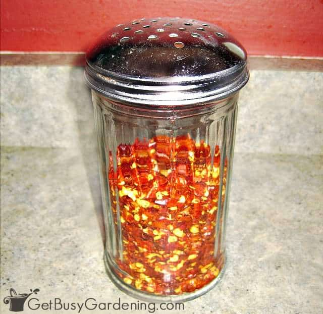 Shaker filled with homemade crushed red pepper flakes