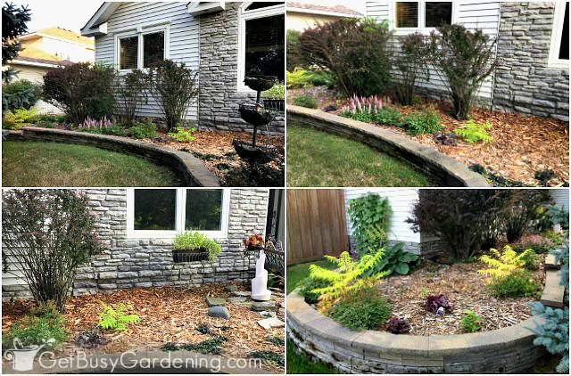 Before pictures of the flower beds around my house foundation