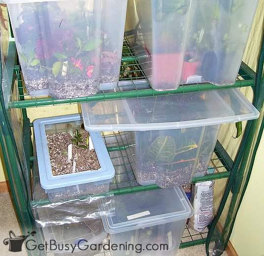 My homemade plant propagation system
