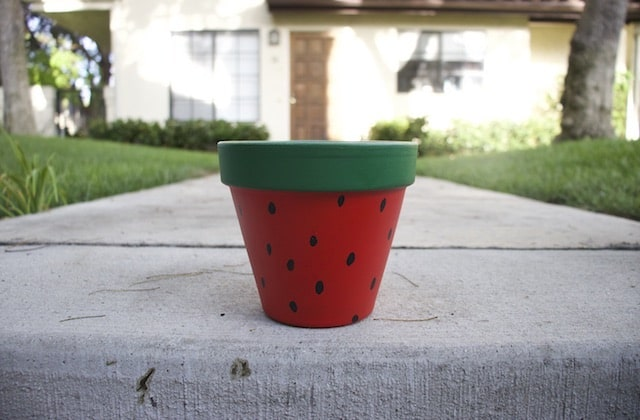 My hand painted flower pot with a cute watermelon design