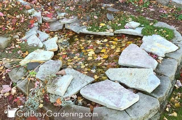 Getting ready to winterize my backyard pond