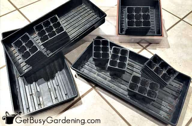 Reusing dirty trays can cause major seed starting problems