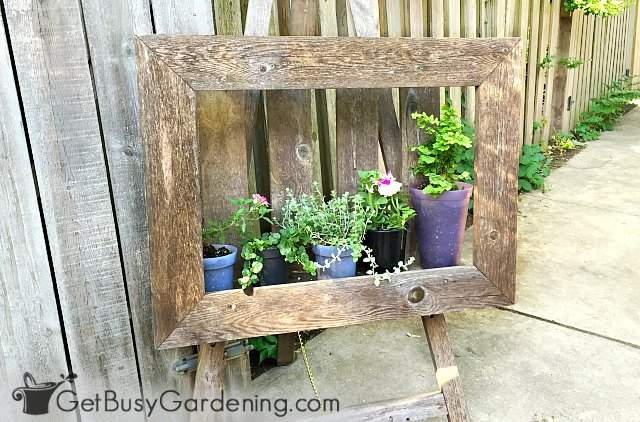 A self standing picture frame is a fun vertical planting system