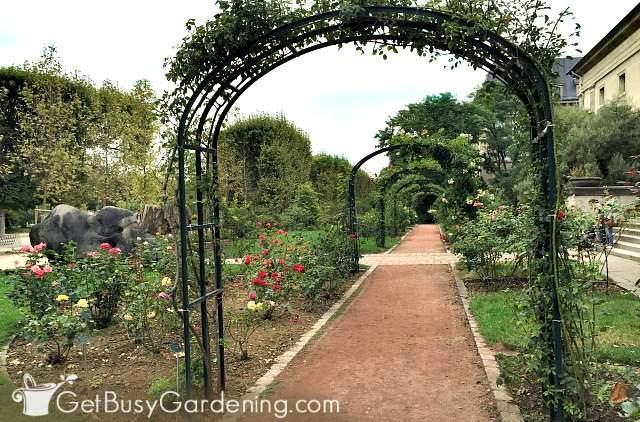 Arches are wonderful vertical garden structures