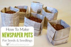 Easy DIY Newspaper Seed Starting Pots