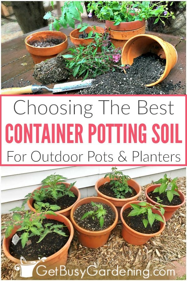 Choosing The Best Container Potting Soil For Outdoor Pots & Planters