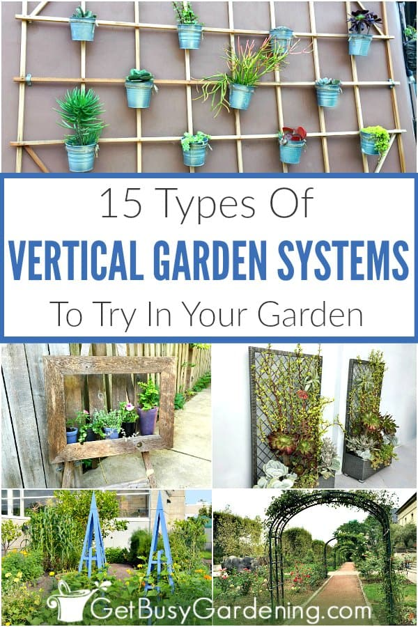 Vertical gardening systems add architecture and beauty to outdoor or indoor gardens. From trellis structures like obelisks and arbors, to a freestanding tower, hanging pots, living walls, or picture frames, vertical growing systems come in tons of variations. For the garden, or small spaces like a patio, balcony or fence. Learn about different types of vertical gardens, and get DIY ideas you can use for growing vegetables, flowers, herbs, or any type of plant.