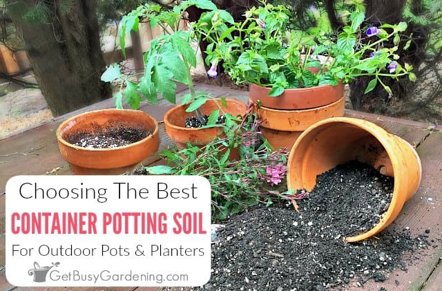 Best Potting Mix For Container Gardening, How To Start Container Gardening