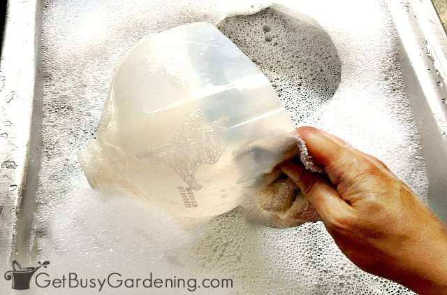 Hand washing winter sowing milk jug