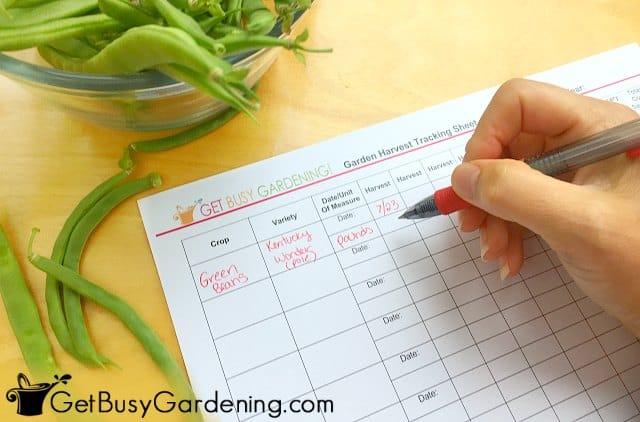 Filling in the harvest tracker sheet