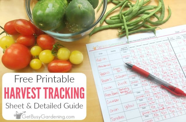 Free Printable Garden Harvest Tracking Sheet & Guide