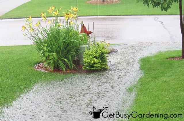 Heavy rainwater runoff after a storm