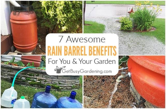 7 Awesome Benefits Of Rain Barrels