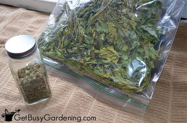 Keeping dried parsley in a spice jar and a baggie