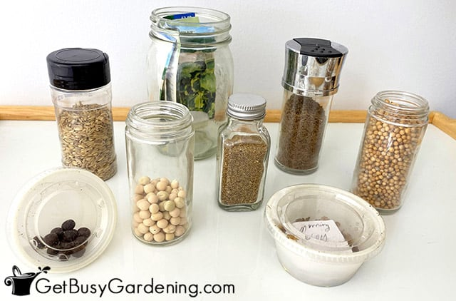 Options for seed storage containers