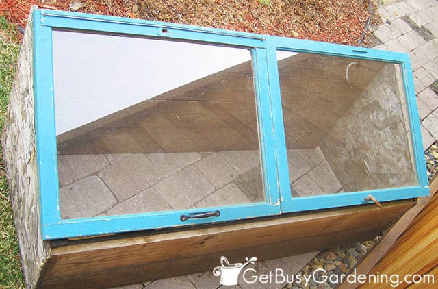 A cold frame made from old windows