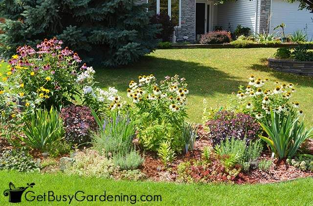 Beautiful lasagna flower garden bed