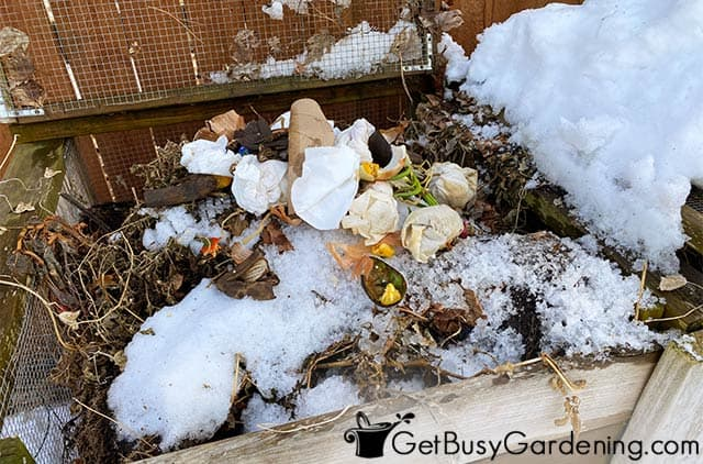 Composting my kitchen scraps in winter