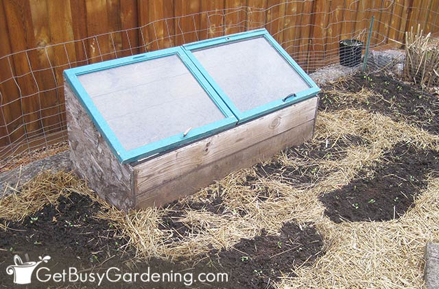 My cold frame in the garden