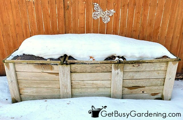 My compost bin covered in snow