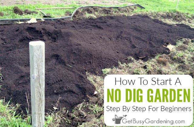 No Dig Gardening 101: How To Start A No Dig Garden