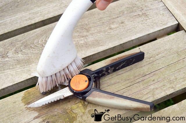 Scrubbing gunk off pruning shear blades