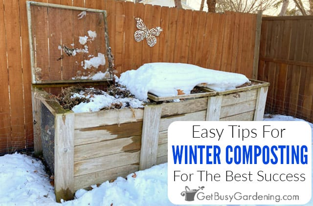 7 Tips For Winter Composting Success