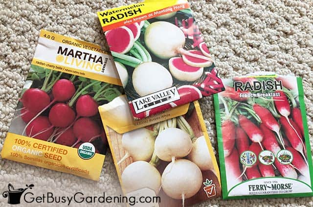 Different types of radish seed packets