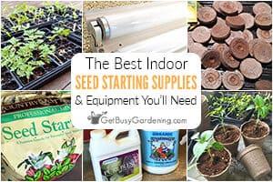 The Best Indoor Seed Starting Supplies & Equipment