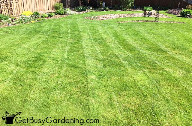 A simple lawn striping pattern