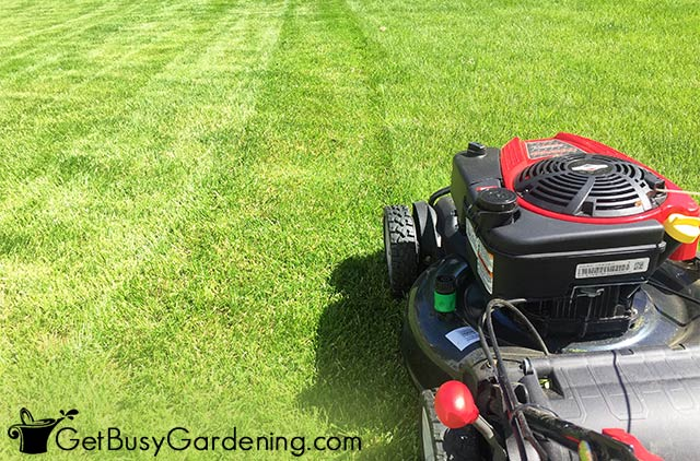 Mowing patterns into my lawn