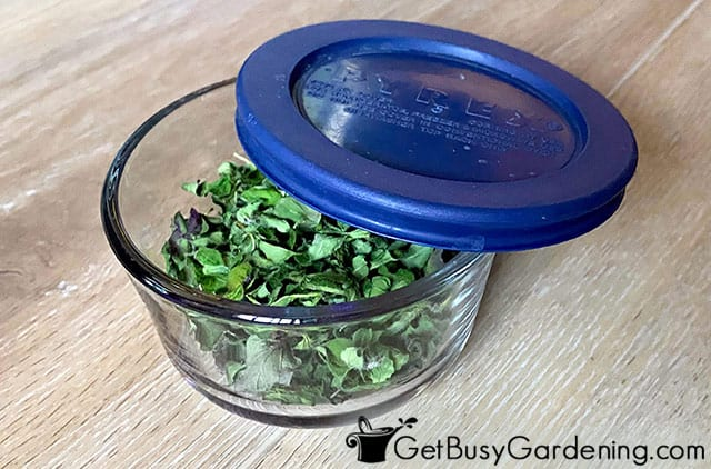 Storing dried oregano in a sealed container