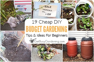 Beginner's Guide To Gardening On A Budget (19 Cheap DIY Tips)